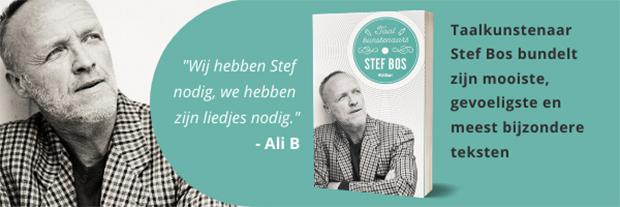 Taalkunstenaars Stef Bos boekcover
